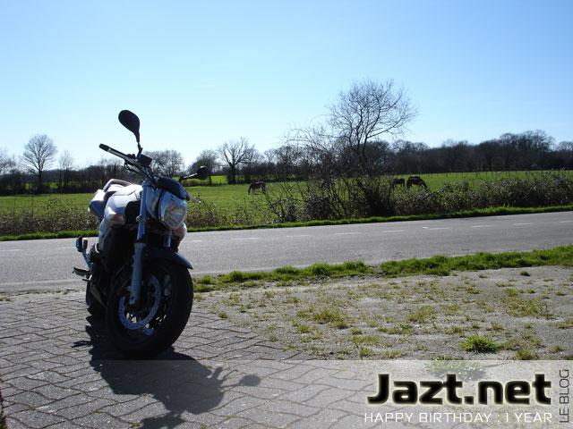 GSR 600 de David Jazt