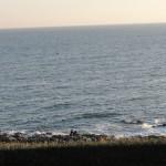 aux pieds de la villa océan