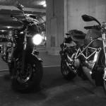 Suzuki Bandit Rennes