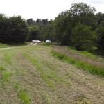 petit chemin de campagne Bretonne