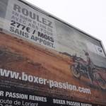 Boxer passion Rennes