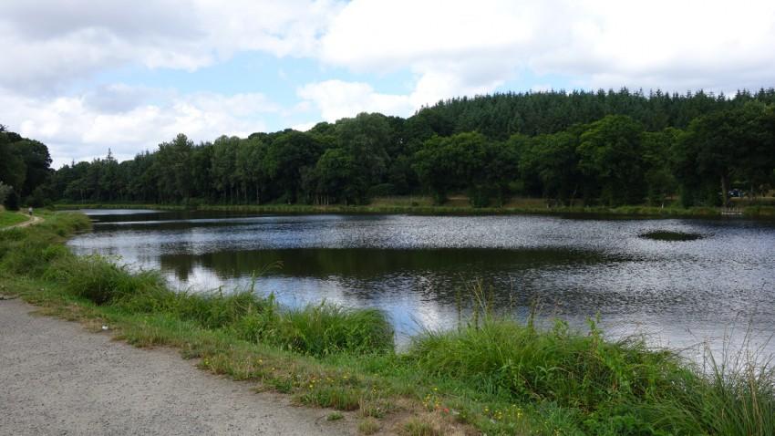 étang à Corlay (departement 22)