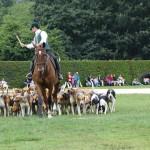 chasse avec des chiens à la Bourbansais (Rennes)