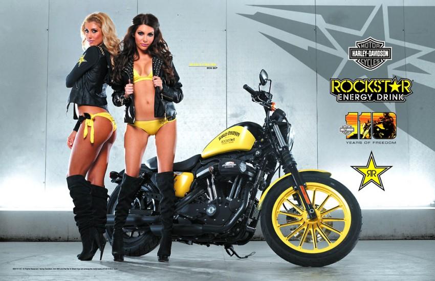 883 Iron Harley Davison Rennes