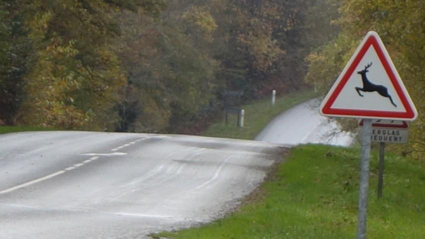 route départementale Bretonne
