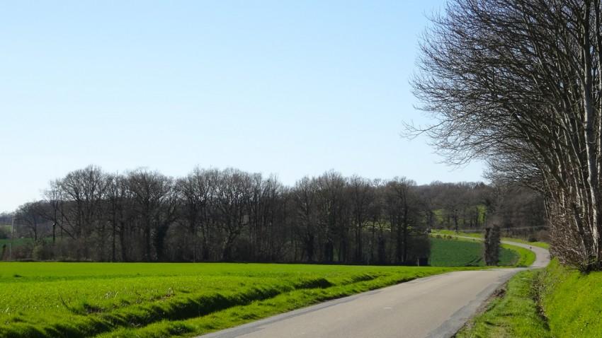 jolie routes sinueuses en Bretagne
