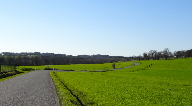 routes sinueuses dans le morbihan