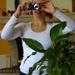 Jolie plante ;)