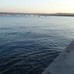 Le Môle des Noires - Saint-Malo