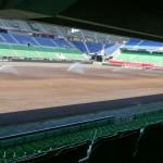 Pelouse du Stade Rennais
