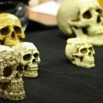 les skulls
