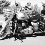 moto américaine Harley Davidson, photo noire et blanc