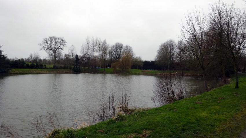 lac de Melesse en mars 2015