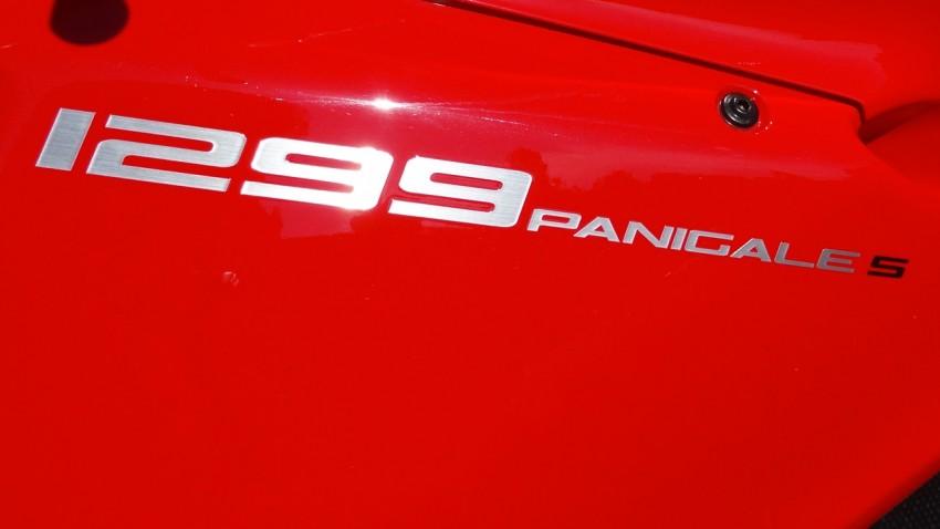1299 S Panigale logo