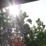 soleil est au rendez-vous en Bretagne