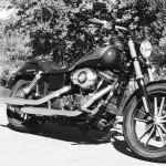 Harley de David Jazt