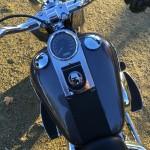 plaisir au guidon d'une Harley Davidson