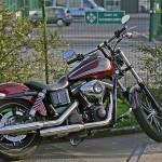 David Jazt et sa Harley Davidson Streetbob