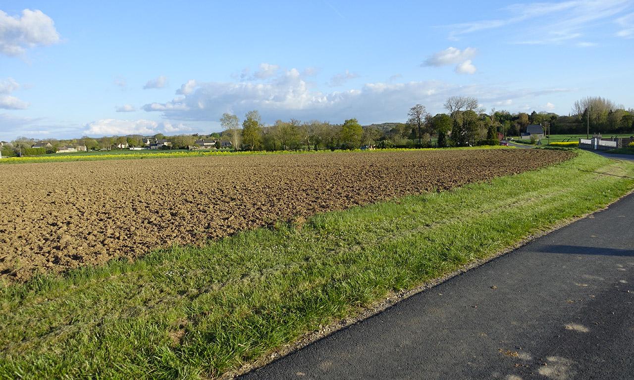 champ autour de Rennes