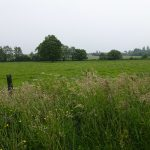 campagne Bretonne