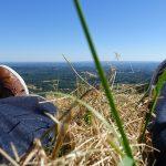 assis dans l'herbe au suc-au-may