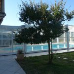 Le jardin piscine à la ferme Laupillère à Sarrazac