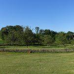 vue depuis la ferme Laupillère à Sarrazac