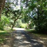 Chambres d'Hôtes Nature et Bien-être à Soustons
