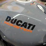 Ducati Monster, peinture grise