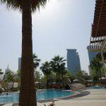 Palmier et piscine au Shengri-La Doha