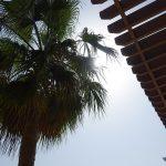 ambiance sur la terrasse du Shangri-La doha