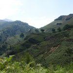 vue magnifique sur la montagne l'été