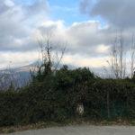 vue vers les montagnes pour une sortie moto