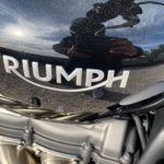 logo Triumph sur le Rocket 3R